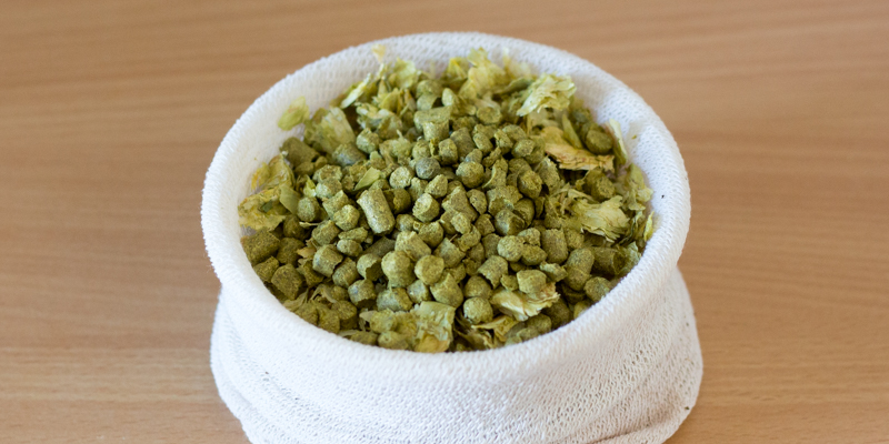 Le houblonnage à cru <br />(Dry Hopping)